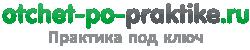 Отчет по практике: примеры 2020 года